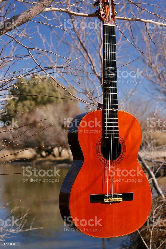 Lakeside Guitar 2 royalty-free stock photo