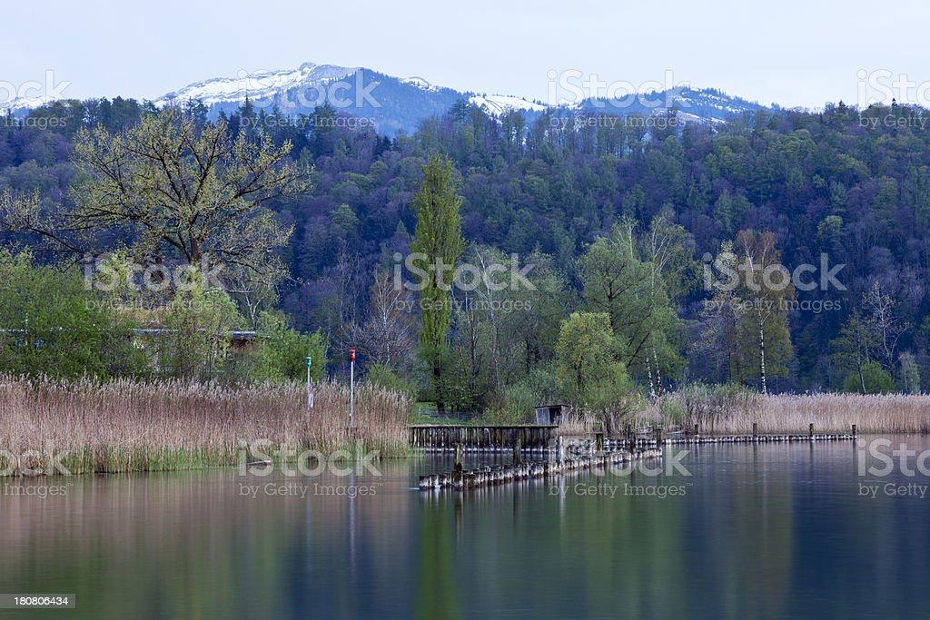Lakeside Still royalty-free stock photo