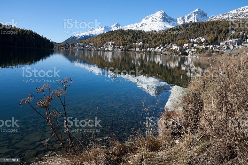 Lakeside St.Moritz: Indian Summer with Larchs and Snow Mountains royalty-free stock photo