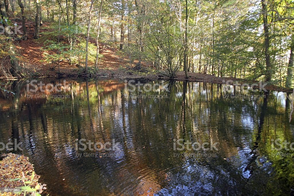 Vista sul lago foto stock royalty-free