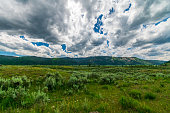 istock Lamar Valley in Yellowstone National Park 1268992079