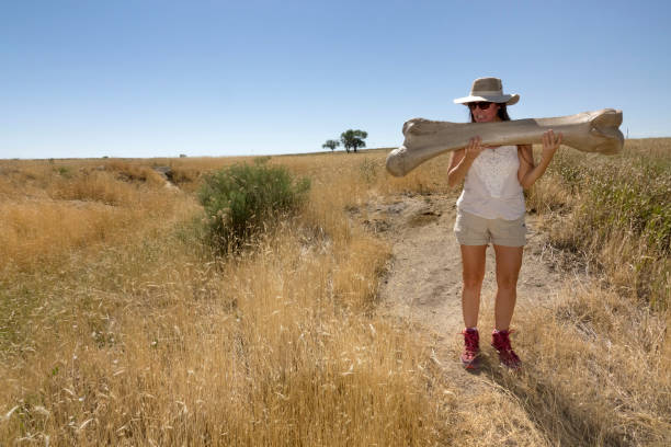 Littleton, Colorado, USA - July 11, 2020: Members of the public visit and explore the Lamb Spring Archaeological Preserve on the Colorado prairie just east of the foothills where a woman holds a cast of a Columbian mammoth femur or long bone dug up at the site.