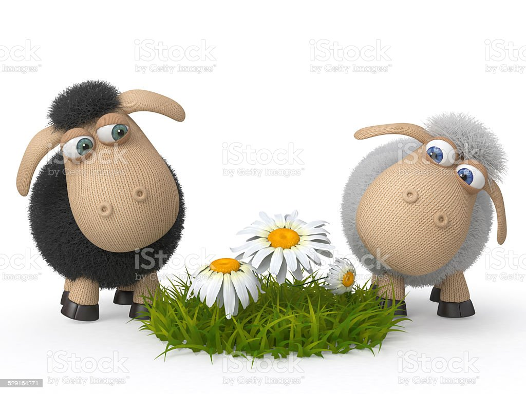 Lambs on a lawn stock photo