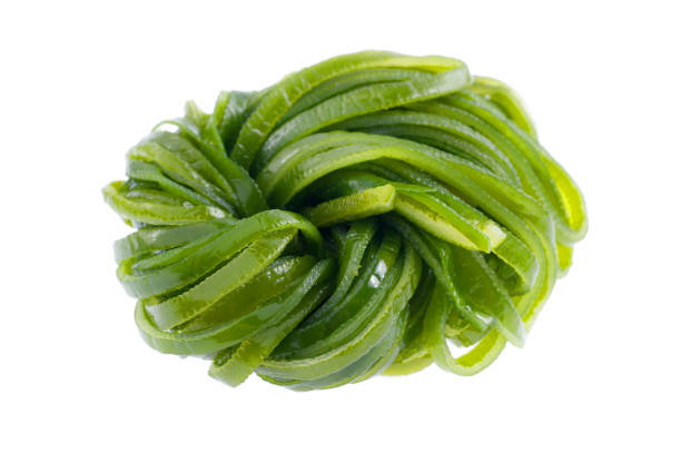 Laminaria japonica (algas) isolado no fundo branco. - foto de acervo