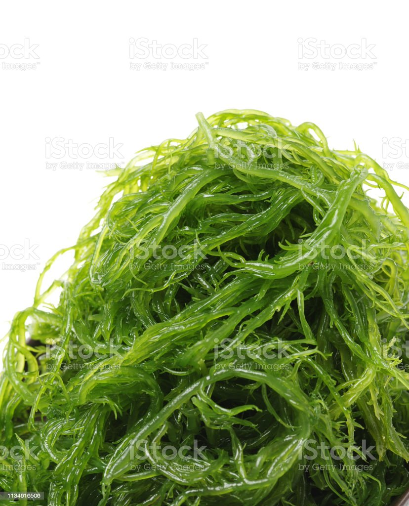 Rumput Laut Laminaria Terisolasi Di Latar Belakang Putih Foto Stok ...