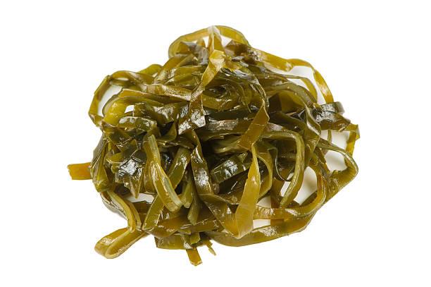 laminaria (quelpo) algas aislado sobre fondo blanco - algas fondo blanco fotografías e imágenes de stock