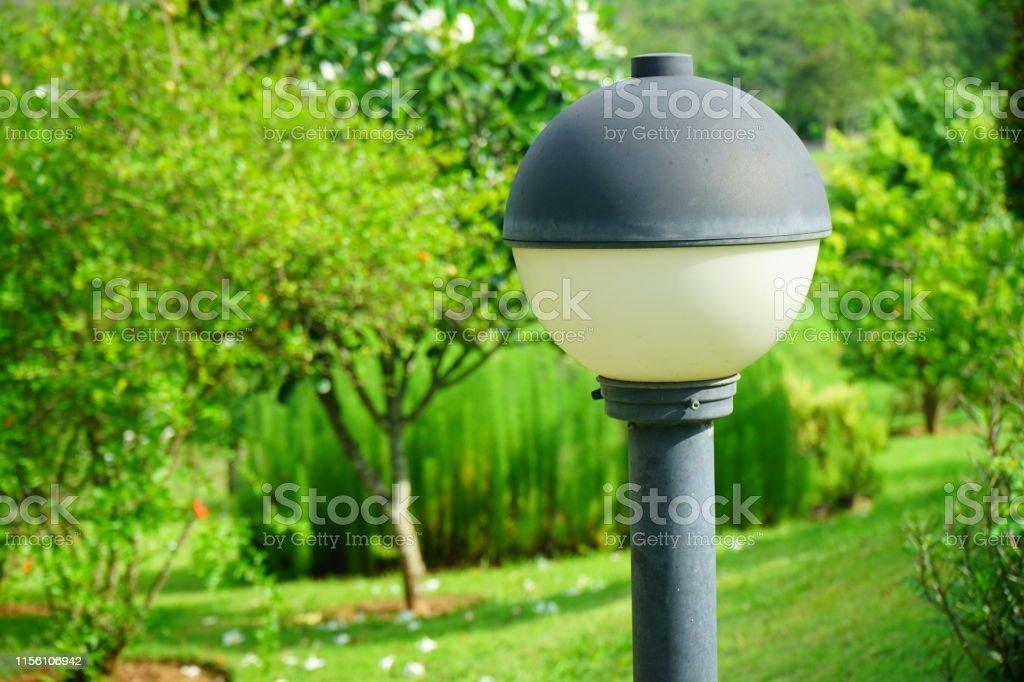Formal Garden, Hotel, Lawn, Illuminated, Lighting Equipment