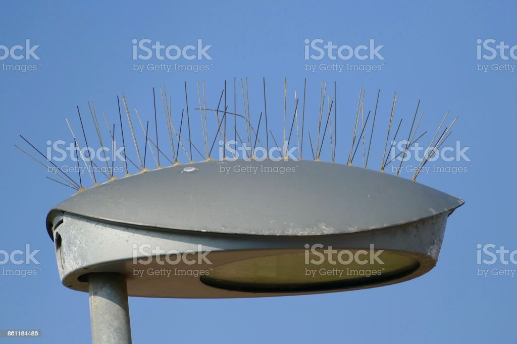 Lamp with needles protection against birds stock photo