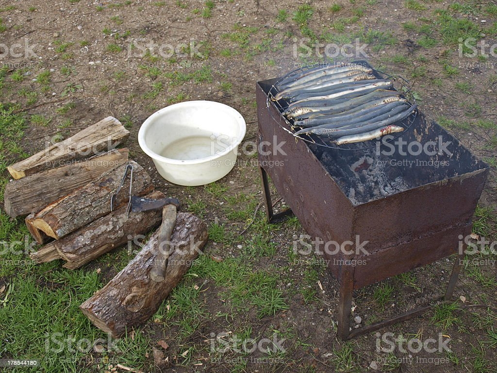 Lamprey on grill royalty-free stock photo