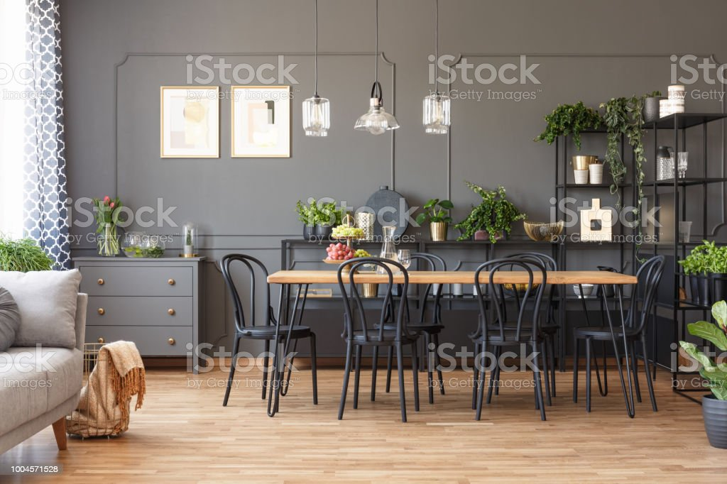 Lamps above wooden dining table and black chairs in grey open space interior with plants. Real photo stock photo