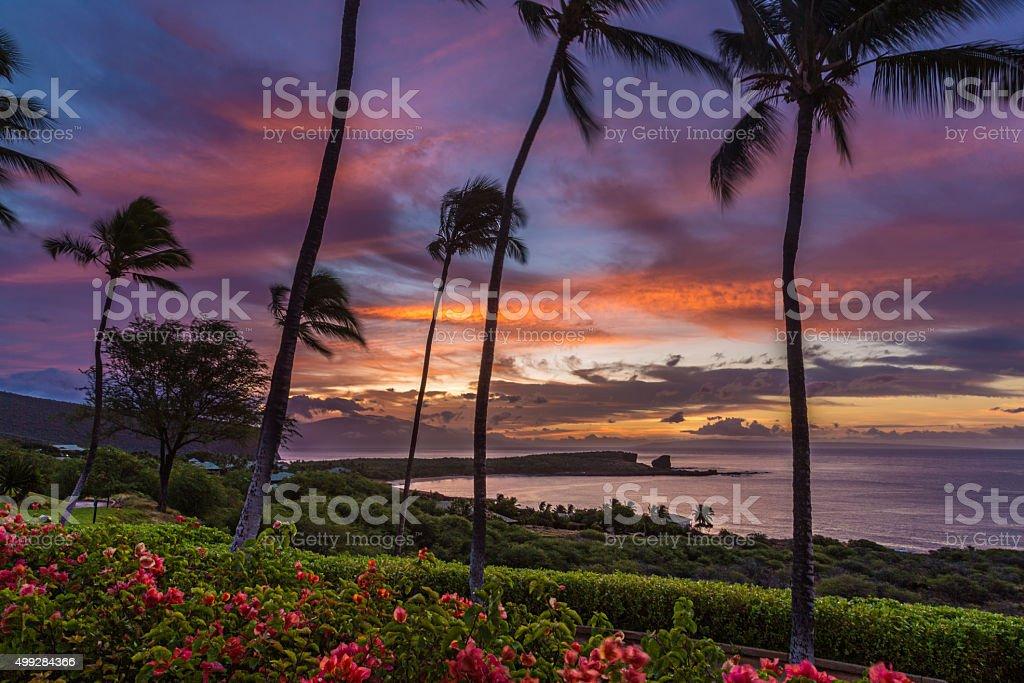 Lanai Sunrise stock photo