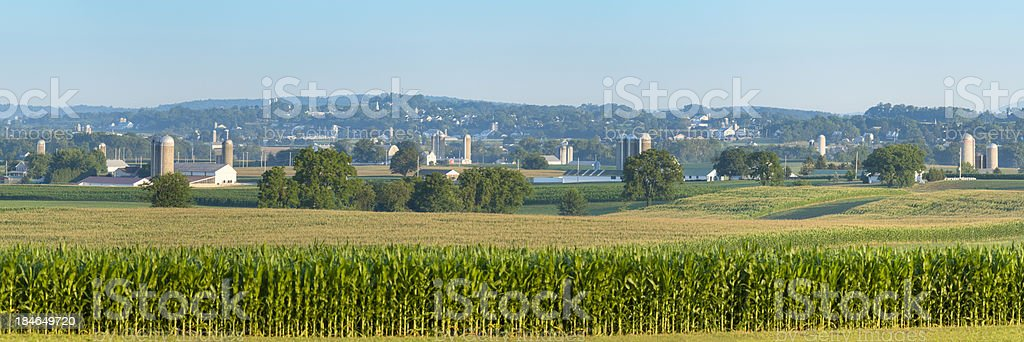 Lancaster County Farm Panorama with Corn Standing Tall stock photo