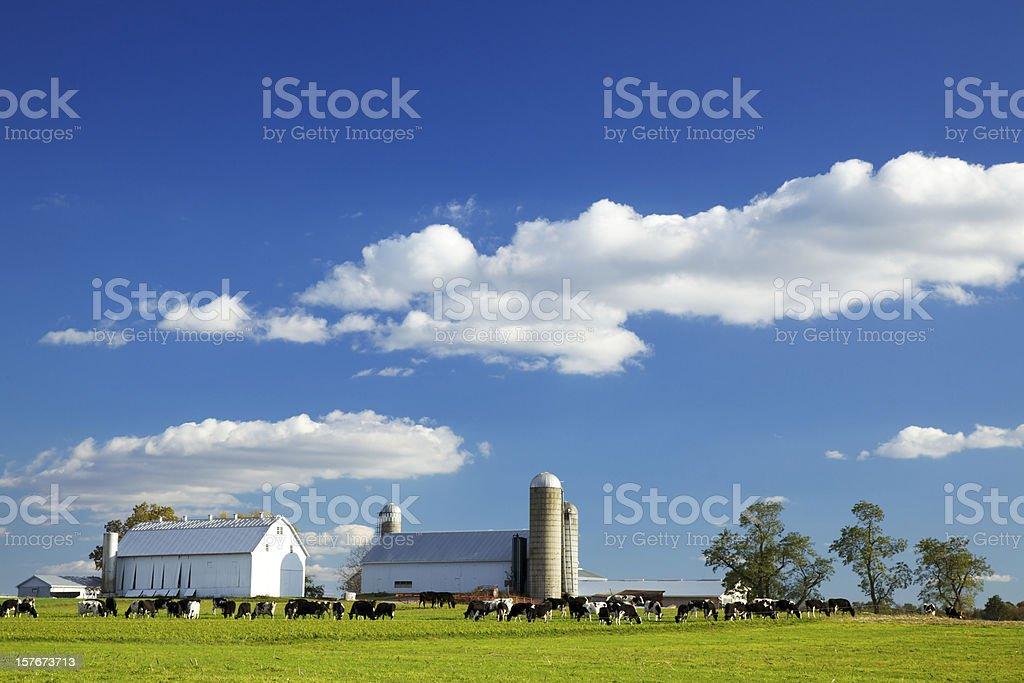 Lancaster County Farm royalty-free stock photo