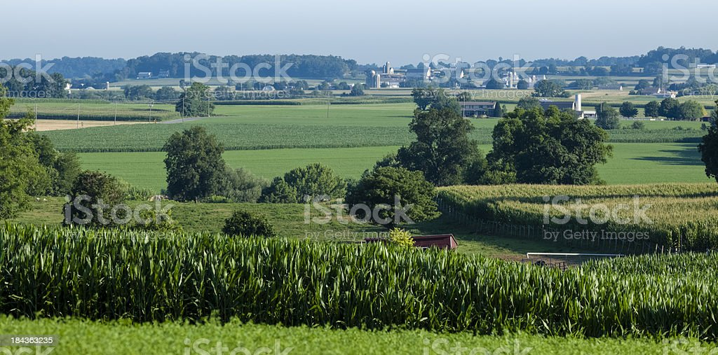 Lancaster County Farm with Lush Green Fields - Panorama stock photo