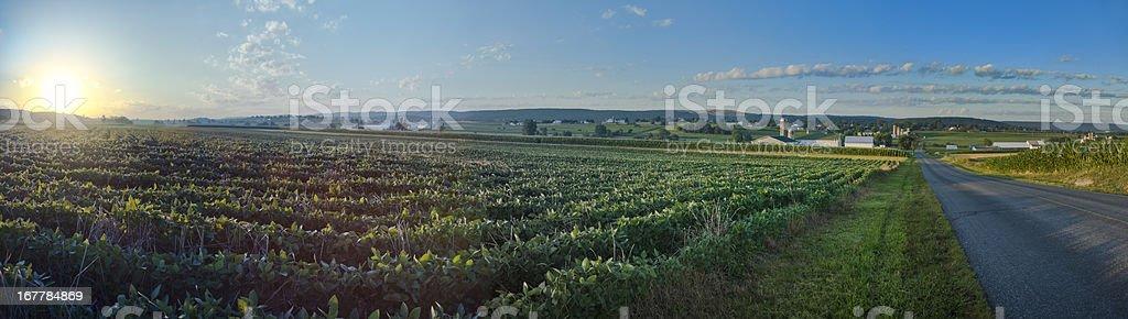 Lancaster County Sunrise Over Fields - Panorama stock photo