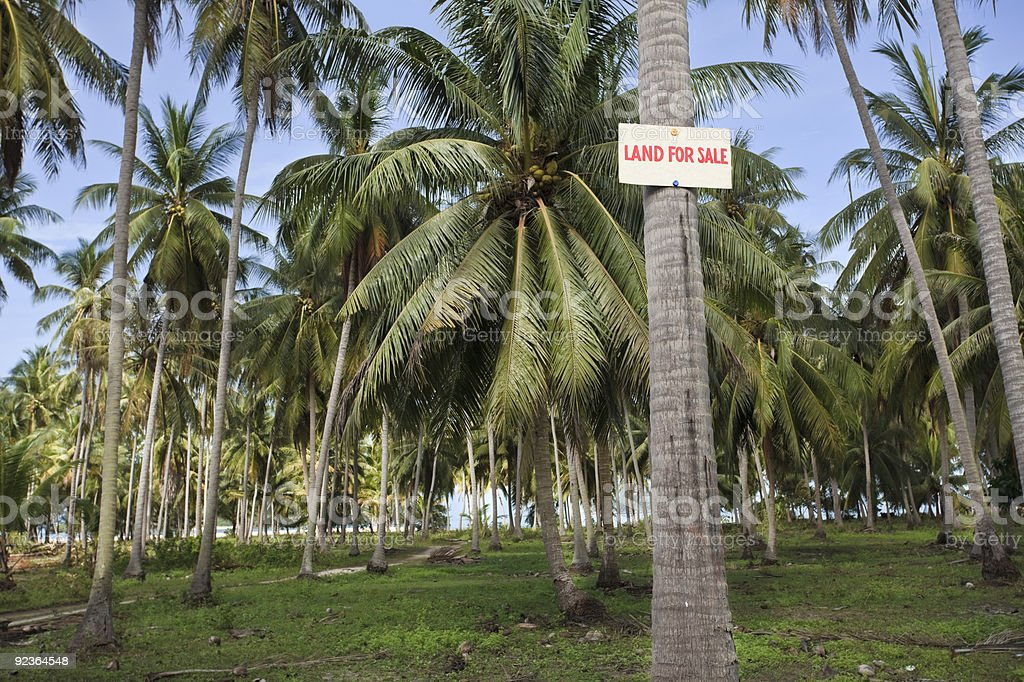 Land for sale. royalty-free stock photo