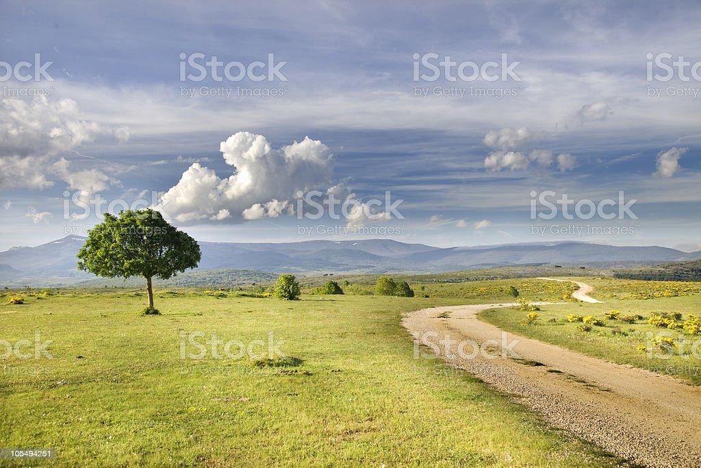 Land of Castille stock photo