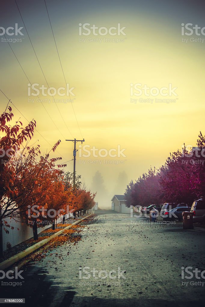 Land of fogs. Spokane morning. stock photo