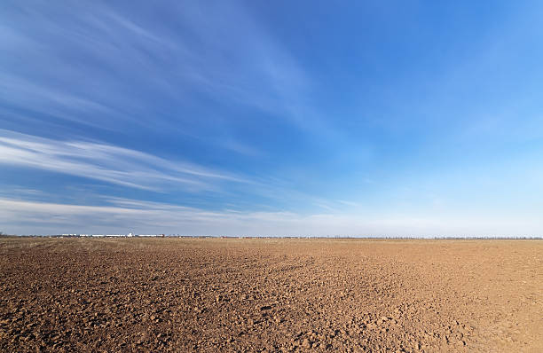 land on the field for planting bright spring photo ukraine midday horizon over land stock pictures, royalty-free photos & images