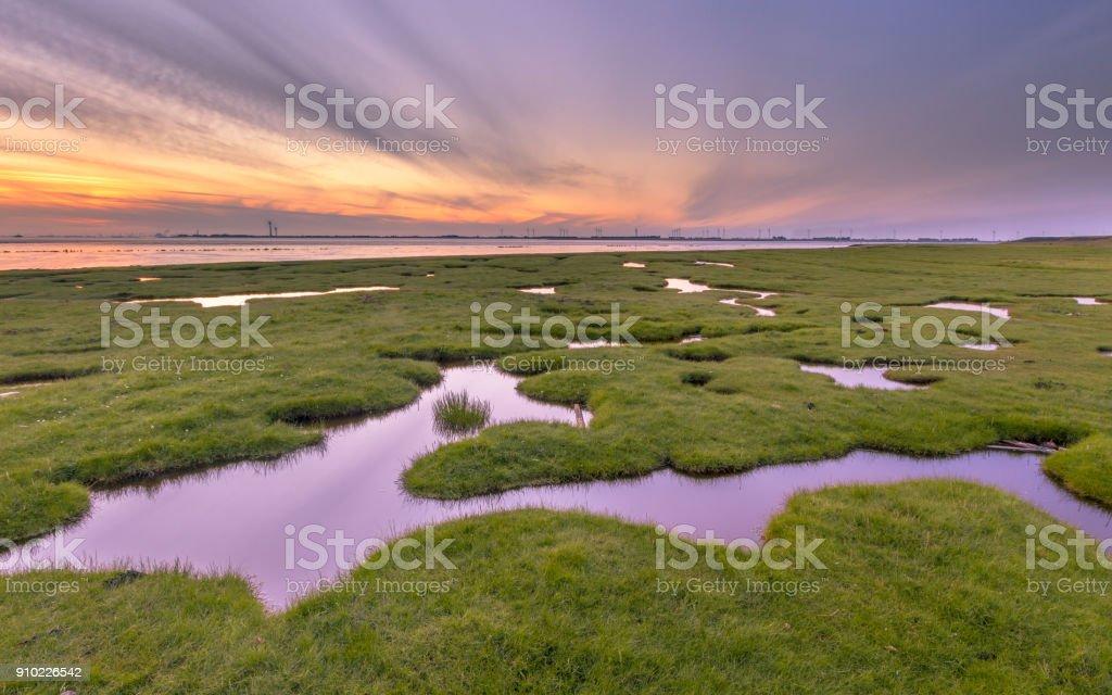 Land reclamation in mud flats on Dollard coast stock photo