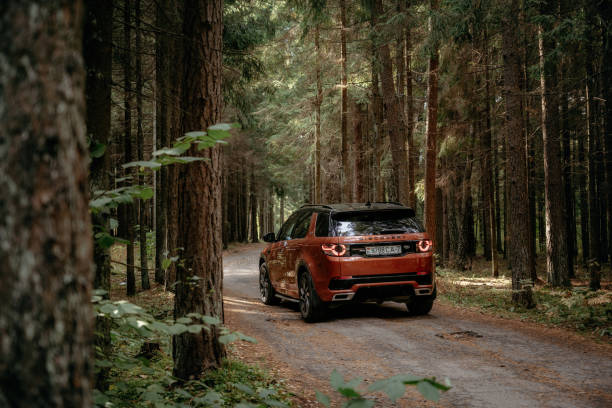 Land Rover Discovery Sport in autumn dense forest forest stock photo