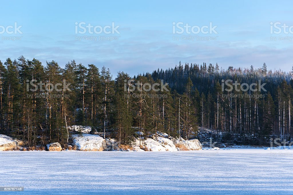 land scape of the frozen lake and forest stock photo