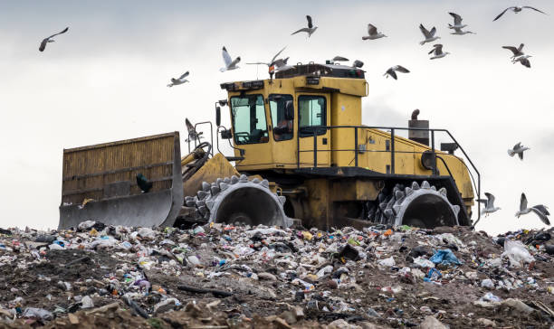 Landfill bulldozer horizon A heavy compactor/bulldozer reshape rubbish on a landfill site and gets mobbed by hungry birds compactor stock pictures, royalty-free photos & images