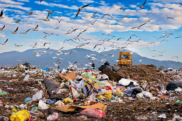 Image result for landfill images