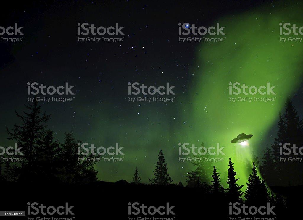 Ovni Landing - Foto de stock de Abeto Picea libre de derechos