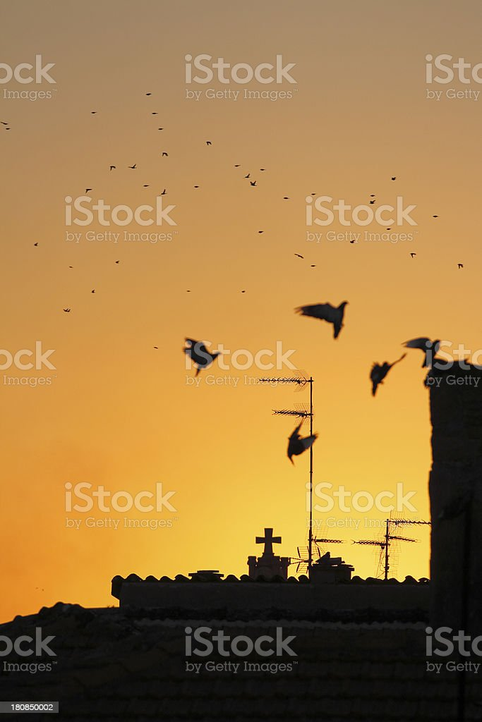 Nicosia city roofs and antennas at dawn Cyprus