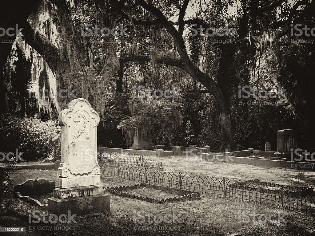 landmark cemetery in savannah royalty-free stock photo