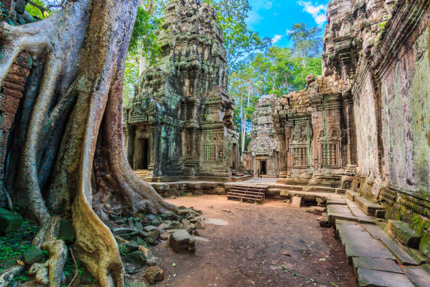 Wahrzeichen von Kambodscha alte Wahrzeichen Ancient City alten steinernen Tür des Tempels und Baum Wurzeln, Tempelruinen Ta Prohm, Angkor, Kambodscha – Foto