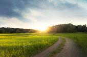 Landskap i Sverige en tidig morgon i slutet av sommaren början av hösten