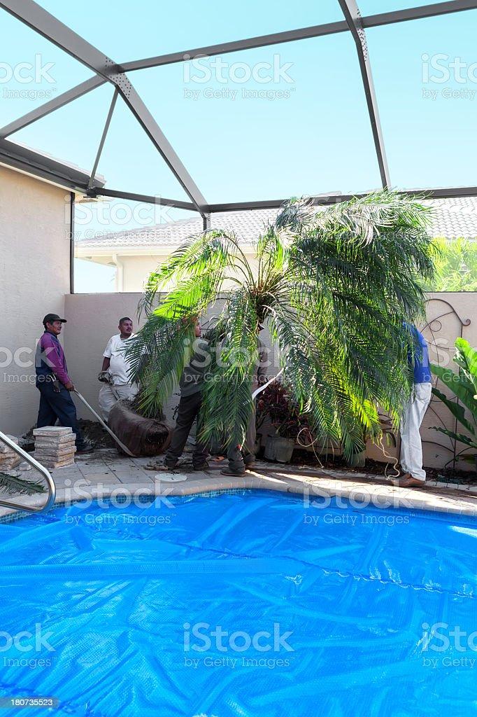 Landscaing a courtyard royalty-free stock photo
