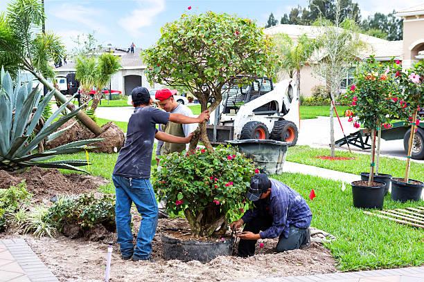 Landscaing un jardín delantero - foto de stock