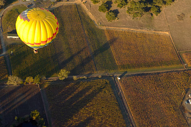 landscape above Farmland seen from the air with a hot air balloon in the foreground sonoma county stock pictures, royalty-free photos & images