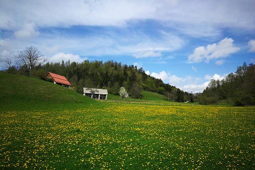 beautiful landscape above river Idrijca valley, Slovenia, Europe, in springtime