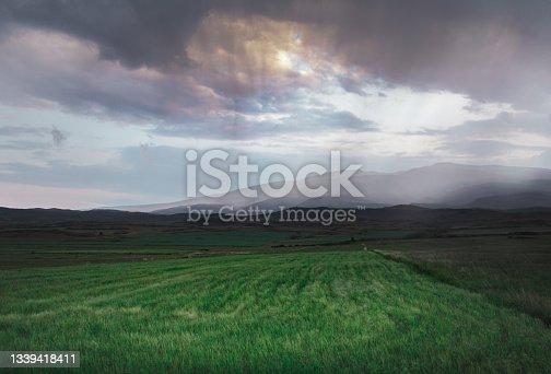 istock Landscape After Rain 1339418411