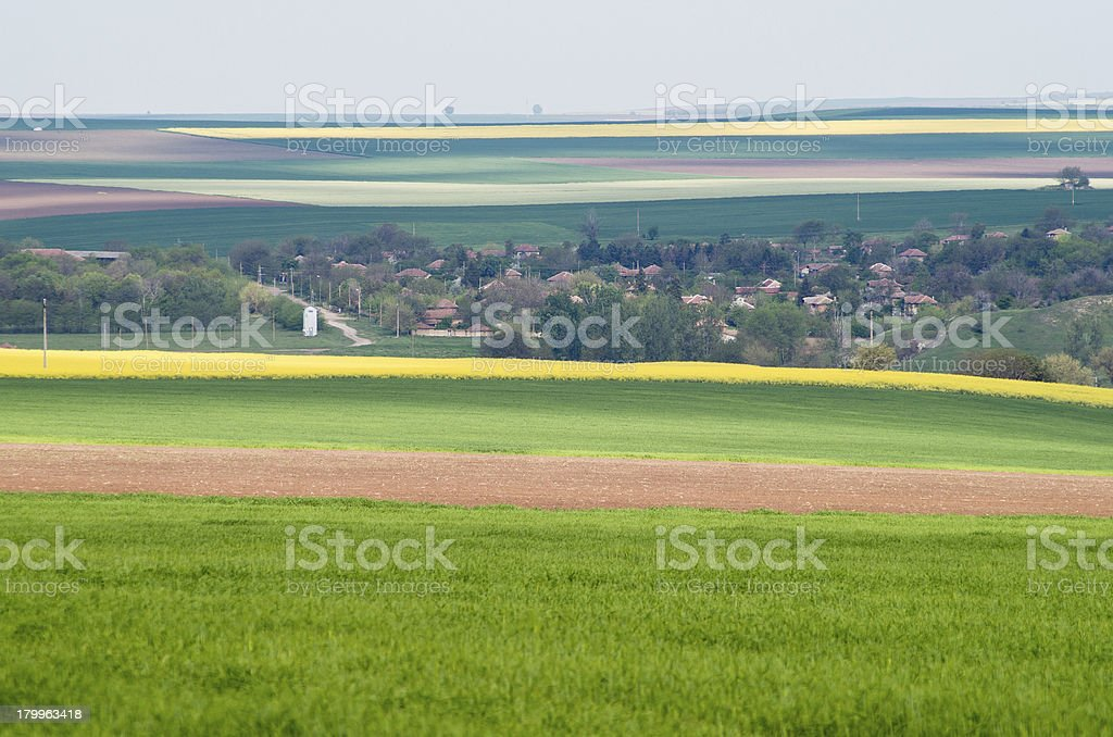 landscape agricultural royalty-free stock photo