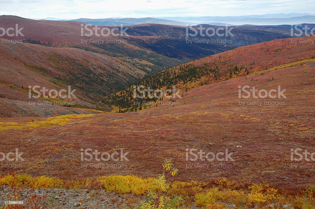Landscape along Top of the World Highway,Yukon Territory,Canada stock photo