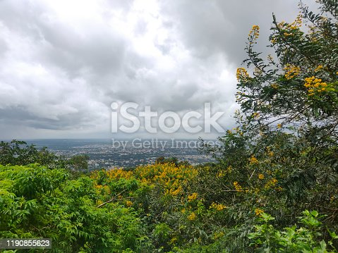 Landscape Arial view of Mysore city through trees and bushes with cloudy sky in the background.