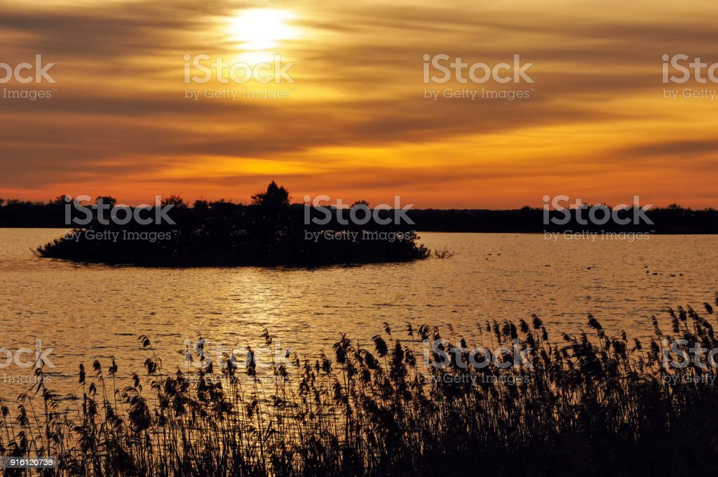 Landscape at dusk in the  Donana National Park, Andalusia, Spain stock photo