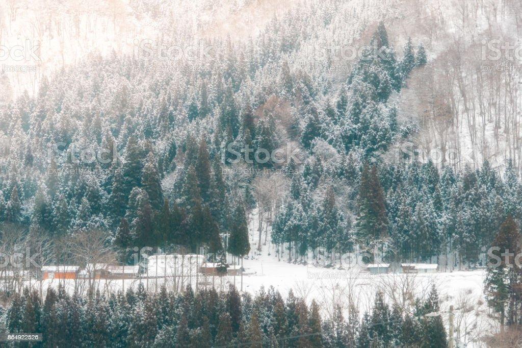 Landscape at Historic village Shirakawago in winter stock photo