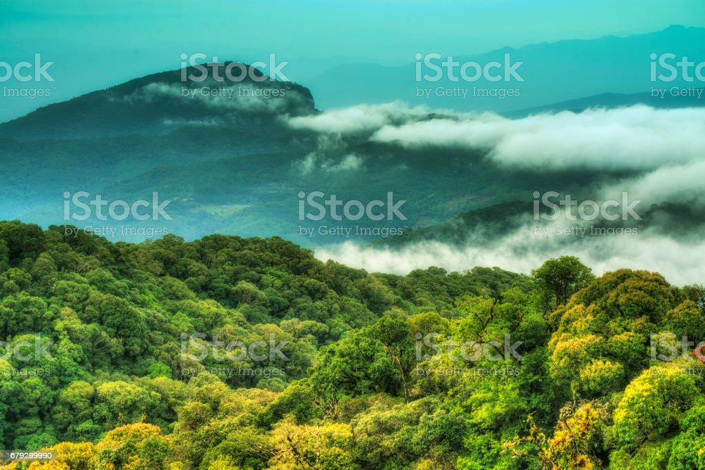 Landscape at Inthanon mountain royalty-free stock photo