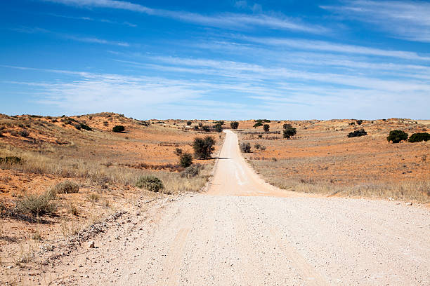 Landscape at Kgalagadi Transfrontier Park, South Africa stock photo