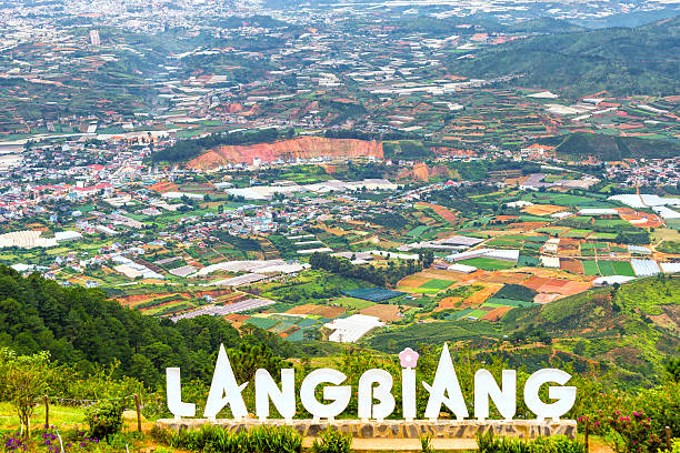 Landscape at Mount Langbiang stock photo