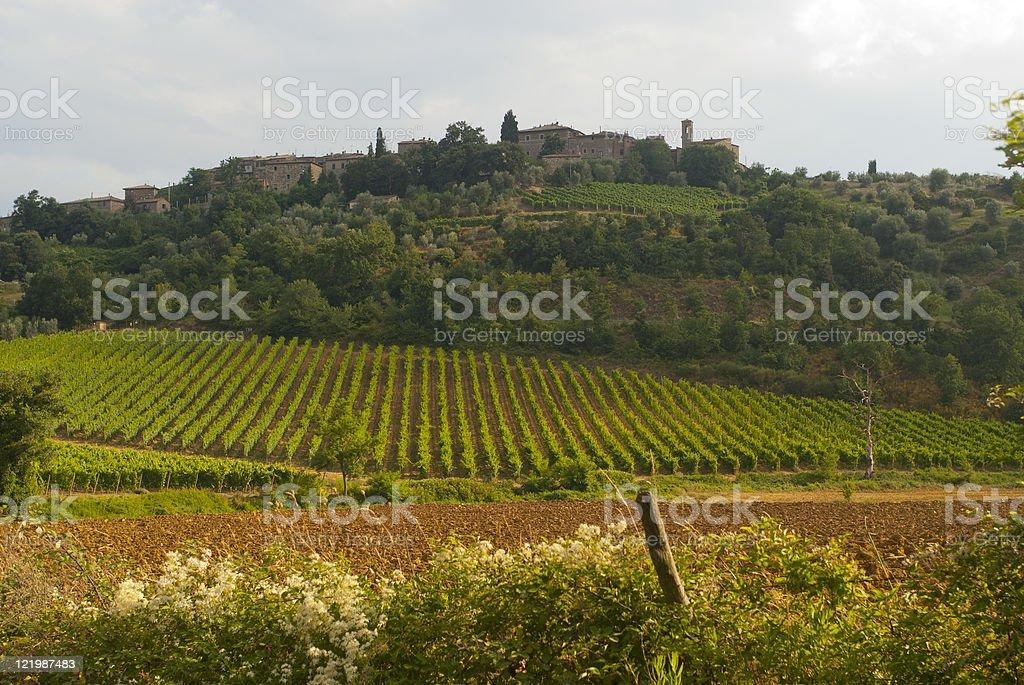 Landscape at Sant'Antimo (Siena, Tuscany, Italy) royalty-free stock photo