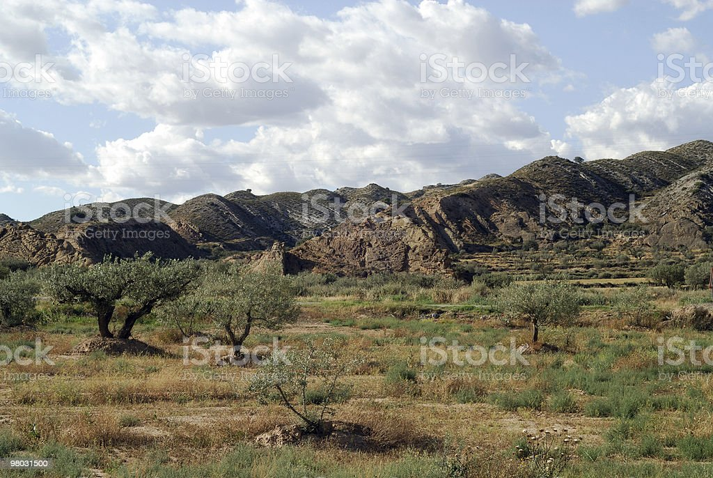 Landscape at summer between Aragon and Catalonia royalty-free stock photo