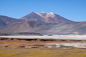 The Atacama Desert is a desert plateau in South America covering a 1000-km (600-mi) strip of land on the Pacific coast, west of the Andes mountains. The Atacama desert is one of the driest places in the world.