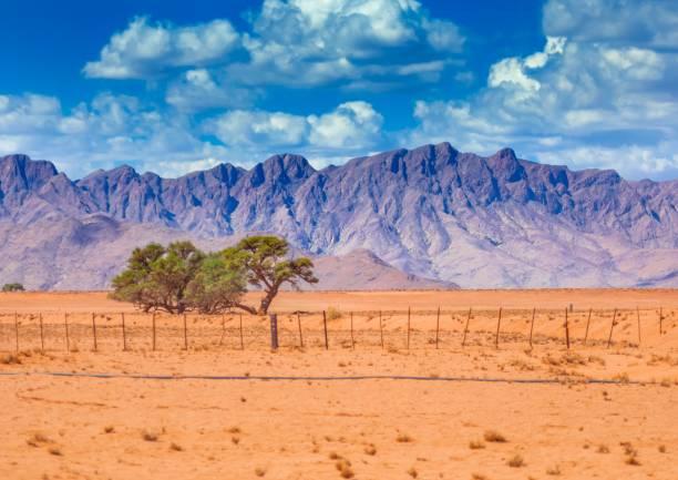 Landscape at the namib desert in Namibia stock photo